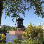 Windmill de Put in Leiden as seen from the birthplace of Rembrandt.